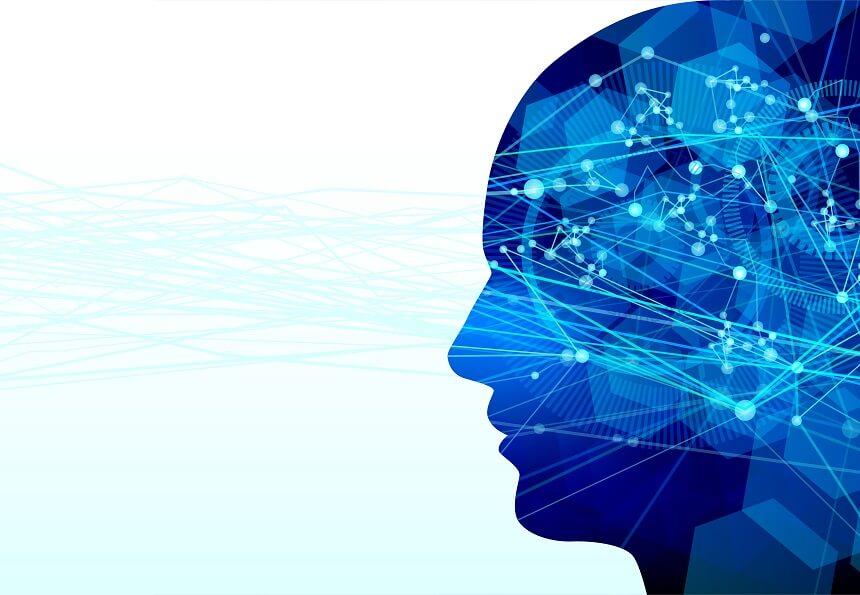 脳の思考回路